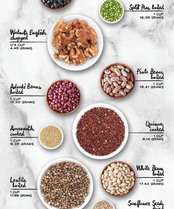 Sources of Plant-Based Proteins
